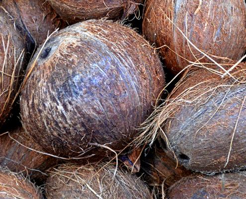 coconut-shy-hire